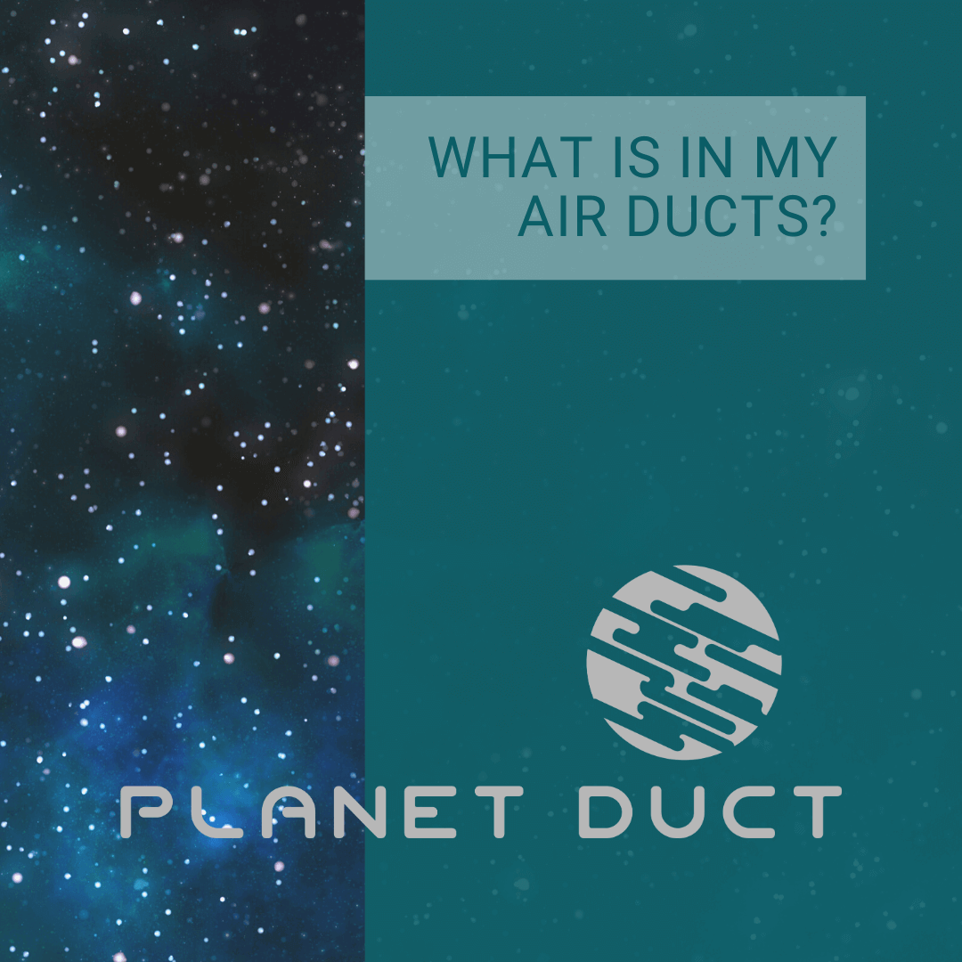 What Is In My Air Ducts?