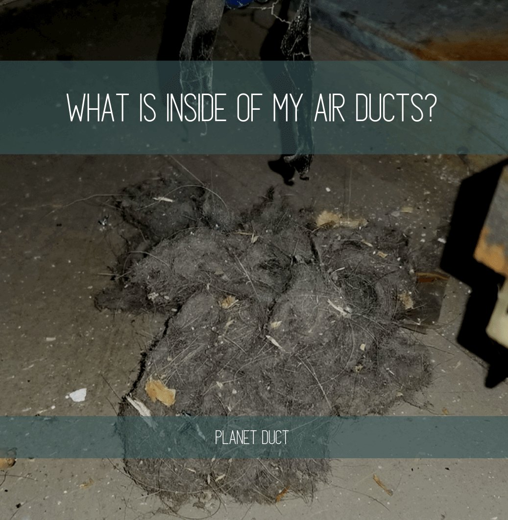 Large Pule of Dirt Trash Debris From Inside Of Air Ducts